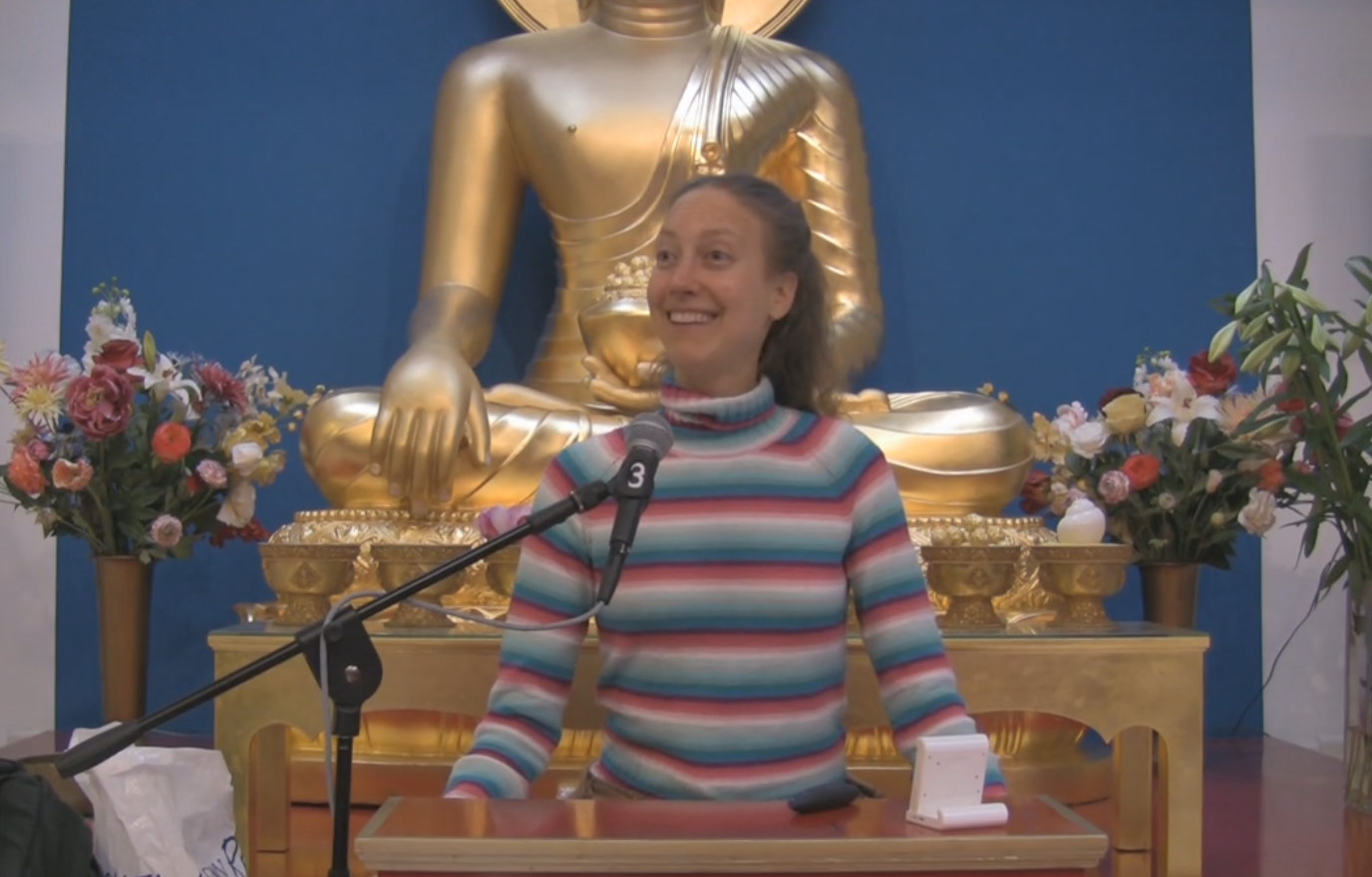 2015-10-08 16_05_45-Marieke van Vugt on the science of meditation on Vimeo